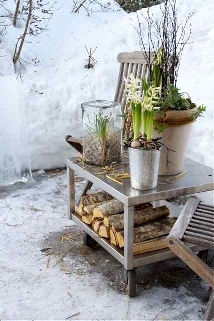 aiamõnud talvel