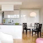 open-plan-condo-kitchen
