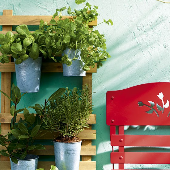 Taimed tuppa kasvama