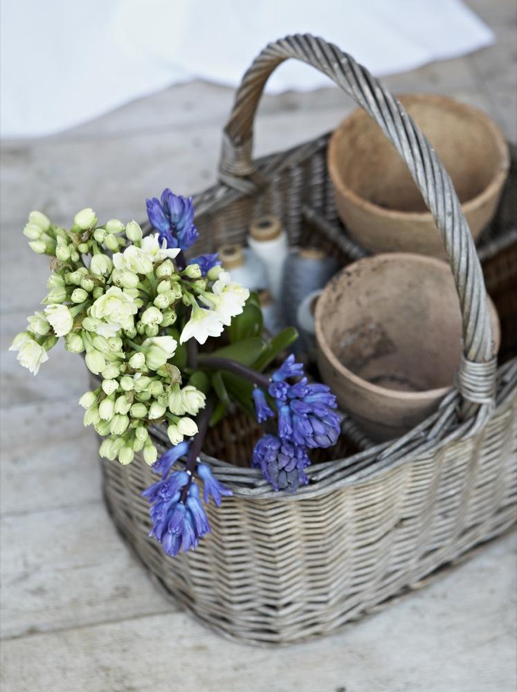 Põhjamaiselt sinine kevad