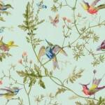 3_Cole & Son Hummingbird