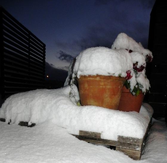 Esimene lumi ja jala koju